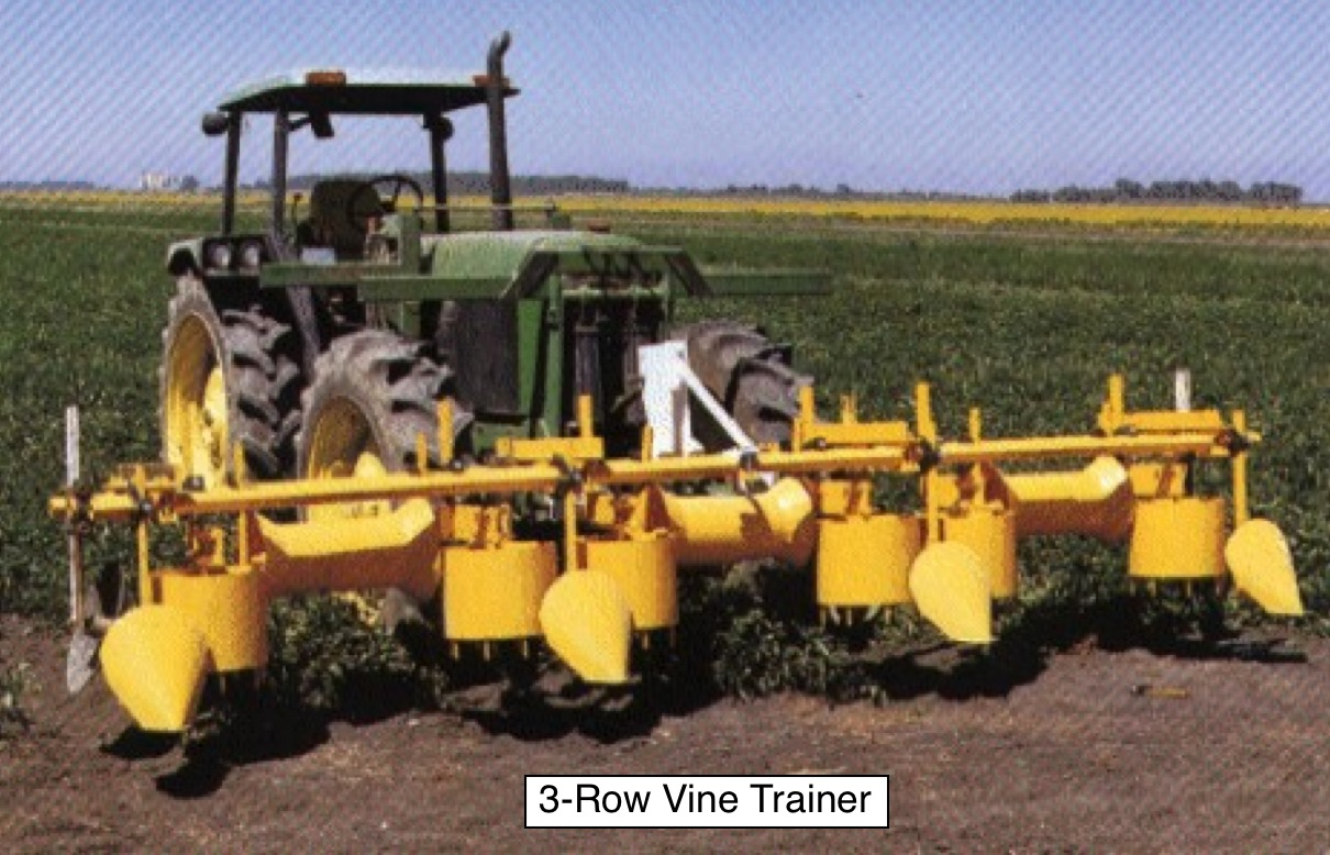 Vine_Trainer_3-row_from_angle