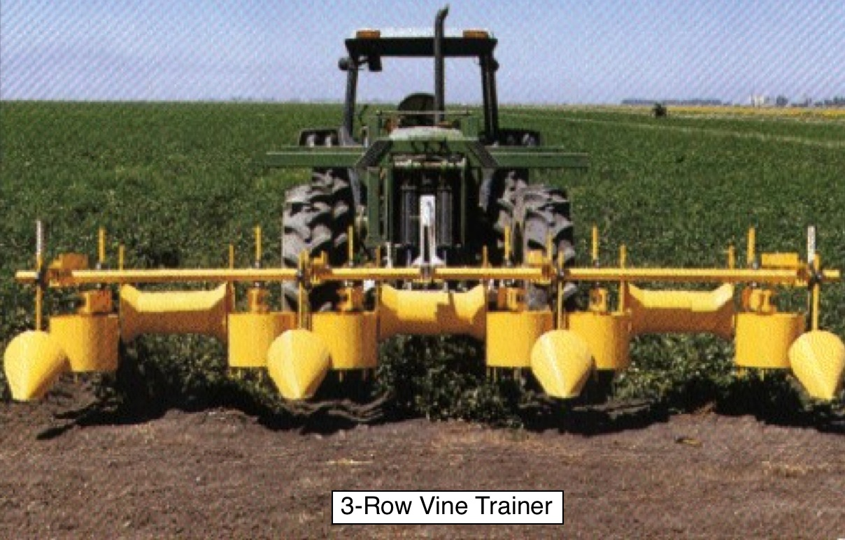 Vine_Trainer_3-row_from_front