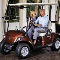2018 Yamaha electric golf cart metallic brown AC drive