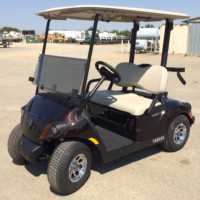 2018 Yamaha Gas Golf Cart Metallic Brown