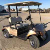 2020 Yamaha Drive2 electric golf cart in Mica Matte color passenger side front view